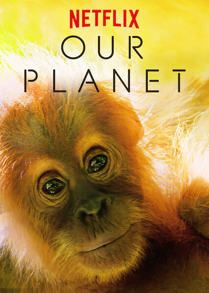 Our Planet on Netflix AUS/NZ